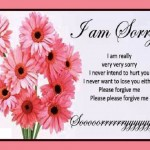 Apology And Sorry Pictures