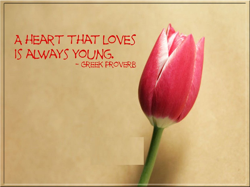 Inspirational Love SMS